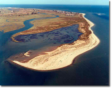 Isla Canela 3