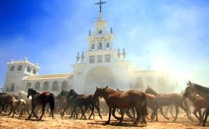 Saca de las Yeguas 2017 Almonte