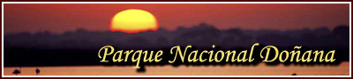 parque Nacional Donana