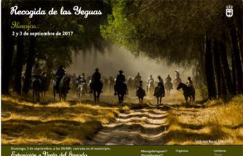 Recogida de las Yeguas Hinojos 2017