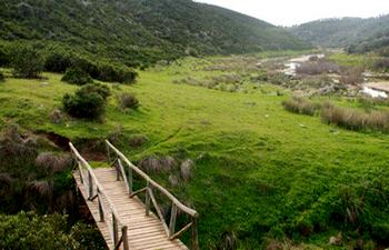 Rutas por Almonaster y Paymogo este fin de semana dentro del Circuito de Actividades en la Naturaleza