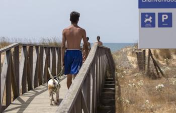 El Ayuntamiento de Huelva amplía la zona de mascotas en la playa del Espigón