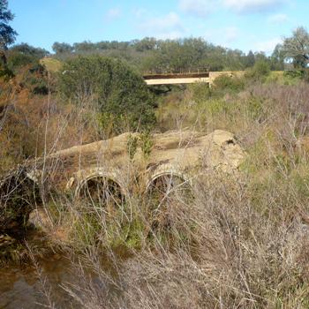 Diputación construirá un puente sobre el arroyo Tamujoso ubicado en Paterna del Campo
