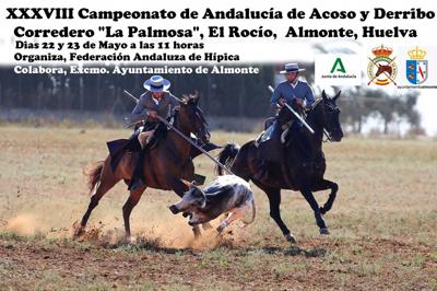 38 CAMPEONATO DE ANDALUCÍA DE ACOSO Y DERRIBO